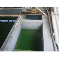 零售高效除镍反应器,辽宁高效除镍反应器,桑尼环保图片