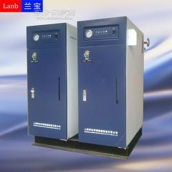 60kw全自动电加热蒸汽锅炉图片