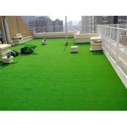青岛草坪 聚远安全网(在线咨询) 济南人工草坪厂图片