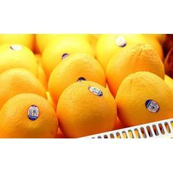 木瓜标签|云南标签|马蹄标签番石榴标签图片