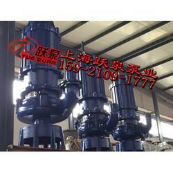 ZJQ300-60-110潜水抽沙泵、潜水排污泵安装图片