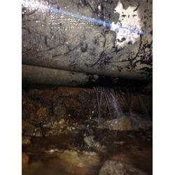漏水检测/地下管网探测图片