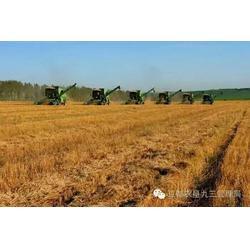 无锡农产品-农场合作加盟-五谷杂粮养生店加盟图片