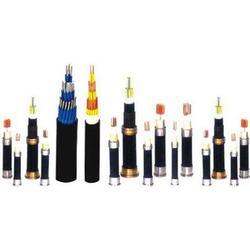 阳谷电缆烟台销售,正宗阳谷电缆(在线咨询),阳谷电缆图片