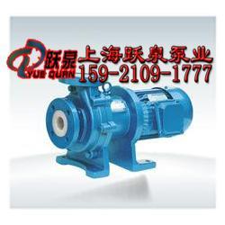 CQB32-20-110F衬氟磁力泵_磁力泵厂家图片