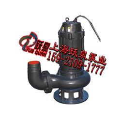 污水泵型号、80WQ45-15-5.5防洪排涝泵图片