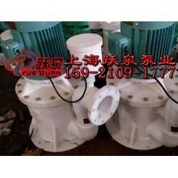 自吸泵|自控自吸泵|125WFB-C1自控自吸泵图片
