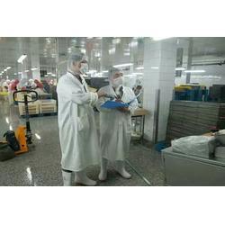 德州灭蚊子|消灭蚊子的办法|康泰有害生物防治(推荐商家)图片