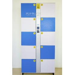 供应众音十门储物柜图片