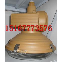 供应SBD1110-YQL50C2免维护节能防水防尘防腐灯图片