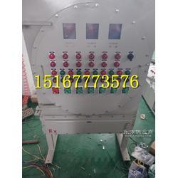 供应BXD51-6/63K防爆动力配电箱规格齐全图片