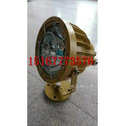 供应BTd92-L250防爆投光灯生产厂家图片