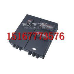 供应BXX8050-4/32A防爆动力检修箱图片