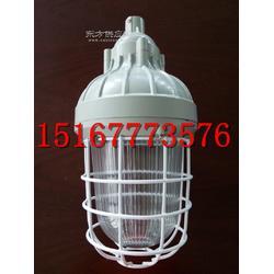 供应CCd93-L175/L250防爆照明灯低价图片