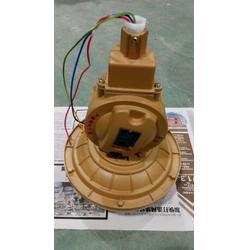 SBD1107-YQL40w免维护节能防爆无极灯图片