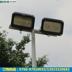 厂家专业生产篮球场高灯杆 8米锥形一拖二灯杆 灯杆配套定制 欢迎订购图片