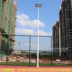 厂家专业生产照明球场灯杆 灯杆生产技术参数 欢迎订购图片