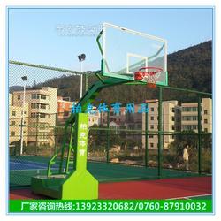 仿液压透明板篮球架成人篮球架厂家直销图片