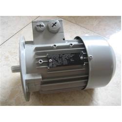 拉萨西门子电机_华力贝尔_供应西门子电机图片