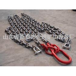 不锈钢链条,304 不锈钢链条,先进矿山图片