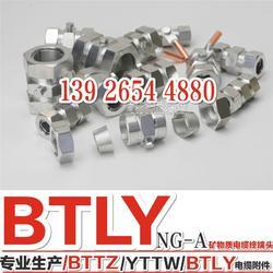 矿物质电缆终端头 BTLY防火电缆终端头 4x16电缆终端头图片
