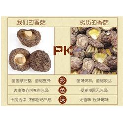 冬菇厂家、耀显电子商务(在线咨询)、潮州冬菇图片