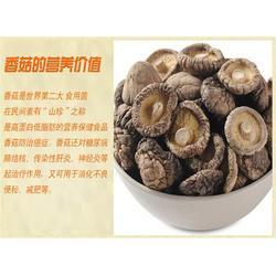 北京香菇公司,耀显,香菇图片