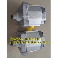 萨澳原装进口齿轮泵SNP1NN/3,2LN03CA03C2C2SANN/NNNNN图片