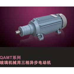 QAMT、QAMT80L2A、磨头电机QAMT(优质商家)图片