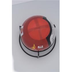 灭火球厂家|国泰科技(在线咨询)|灭火球图片