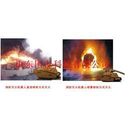 国泰科技(图)_国产消防灭火机器人_灭火机器人图片