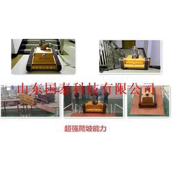 灭火机器人程序_国泰科技(在线咨询)_宁河县灭火机器人图片