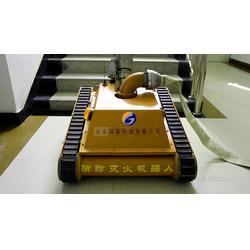 灭火机器人程序、国泰科技、菏泽灭火机器人图片