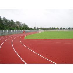 400米塑胶跑道_广东塑胶跑道_通宝体育图片