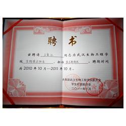 西藏食用菌栽培技术|广州食用菌栽培技术|岁岁丰(优质商家)图片