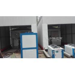 供应SY-II型人工气候室图片