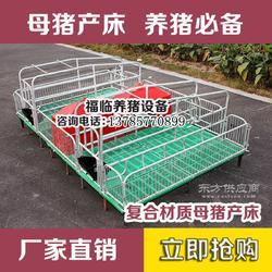 供应养猪设备福临养猪设备 母猪产床 保育床 定位栏 生产厂家 零售图片