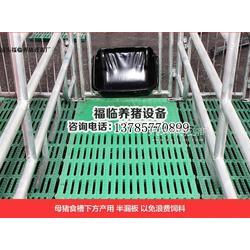 福临养猪设备厂自动化养猪设备母猪产床保育床限位栏食槽,自动上料系统、高配产床、单体产床、双体产床图片
