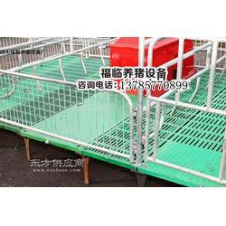 复合材料猪产床复合产床猪用分娩栏复合母猪产床养猪设备图片
