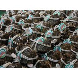 大闸蟹,藏御源商城,一统大闸蟹礼券图片