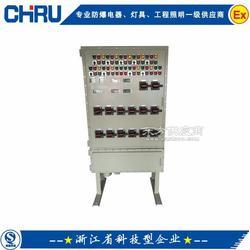 冶金酿酒计量、监测控制配电柜防爆电磁起动配电柜BSK系列防爆照明动力配电柜图片