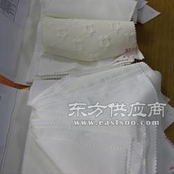 神彩慧数码印花面料PSH-9088 玻璃纱图片