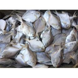 鲳鱼,山东冷冻鲳鱼,万斛食品(优质商家)图片