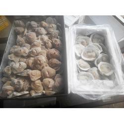 牡蛎肉_万斛食品_冰冻牡蛎肉销售图片