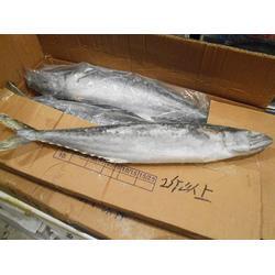 鲅鱼-鲅鱼加工厂家-万斛食品(优质商家)图片