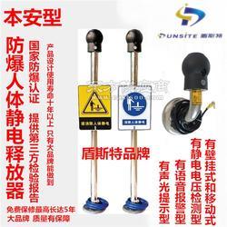 防爆人体静电消除仪/人体静电消除报警器ES-PSA售价图片
