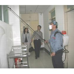 濮阳清波灭鼠-华龙区正规灭四害公司图片