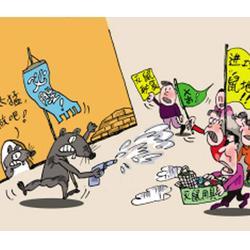 好的灭鼠公司|浚县灭鼠公司|濮阳清波灭鼠(查看)图片