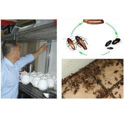 那里有灭蟑螂公司|内黄县灭蟑螂|清波灭鼠公司(查看)图片