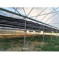 蔬菜大棚施工、蔬菜大棚、芳诚大棚工程(多图)图片